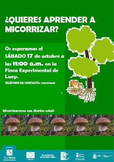 CARTEL MICORRIZACIÓN mini